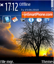 Tree in sunset tema screenshot