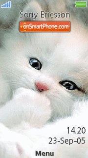 Cute White Kitty es el tema de pantalla
