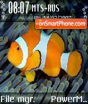 Fish es el tema de pantalla