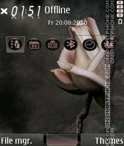 Rose Heart 02 es el tema de pantalla