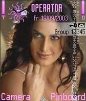 Karina Kaif theme screenshot