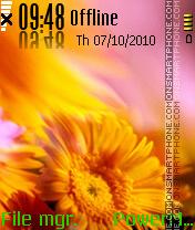 Sun Flower es el tema de pantalla