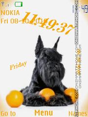 Dogs Oranges theme screenshot