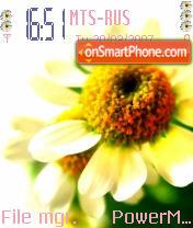 Flower 01 theme screenshot