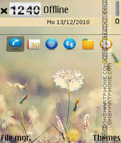 Dandelion-v3 theme screenshot