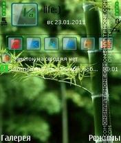 Bambuk by Afonya777 es el tema de pantalla