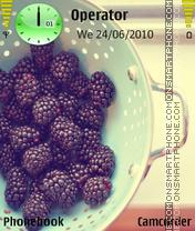 Bilberries es el tema de pantalla