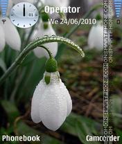 Spring3 es el tema de pantalla