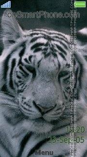 White tiger 11 es el tema de pantalla