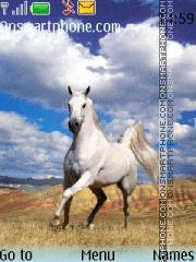 White horse 01 theme screenshot