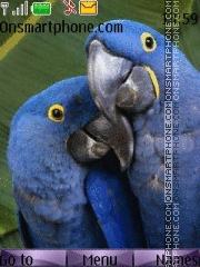 Parrot 06 tema screenshot