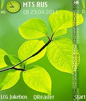 Light theme screenshot