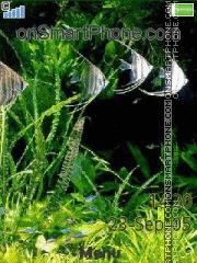 Aquarium 06 es el tema de pantalla