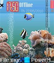 Marine Life 01 es el tema de pantalla