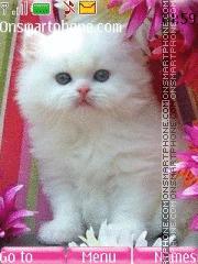 Lovely White Cat theme screenshot