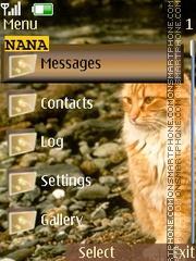 Cat On Beach CLK theme screenshot