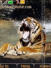 Tiger 41 theme screenshot