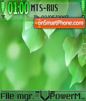 Vista Leaves akd theme screenshot